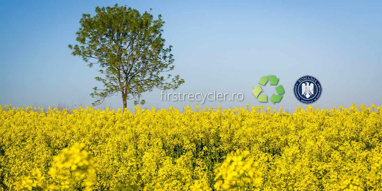 Obtinerea acordului de mediu - Solutii de reciclare deseuri - Craiova, Targu Jiu, Turceni